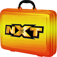 NXT Money In The Bank Briefcase
