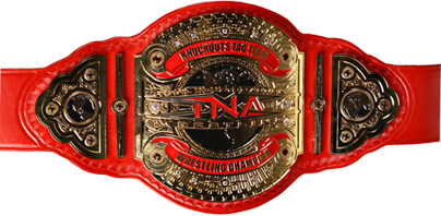 TNA Knockouts Tag Team Champion